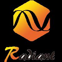 杭州锐达数字技术有限公司简介(Radiant) 1