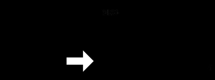 冲击响应谱的合成与控制 1
